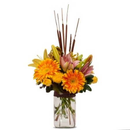 Sunshine and Cattails from Joseph Genuardi Florist in Norristown, PA