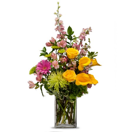 Cheerful from Joseph Genuardi Florist in Norristown, PA