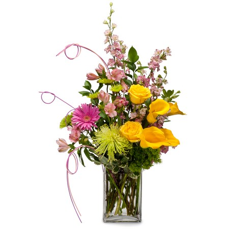 Extra Cheer from Joseph Genuardi Florist in Norristown, PA