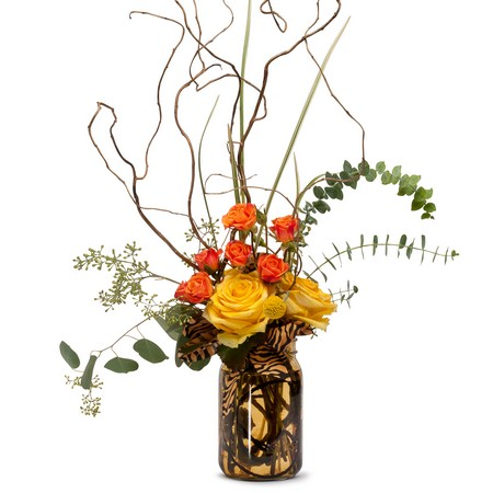 Jungle Fever from Joseph Genuardi Florist in Norristown, PA