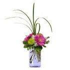 Oh Happy Day from Joseph Genuardi Florist in Norristown, PA