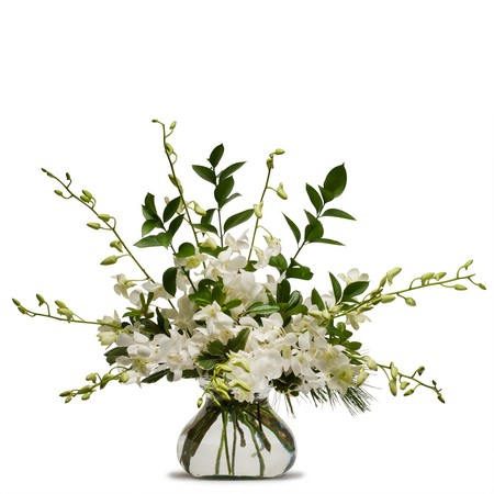 Simply White from Joseph Genuardi Florist in Norristown, PA