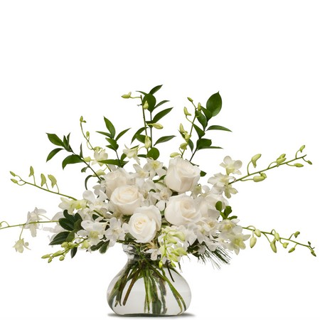 White Splendor from Joseph Genuardi Florist in Norristown, PA