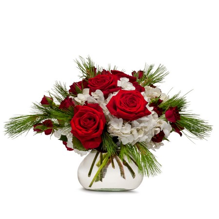 Christmas Classic from Joseph Genuardi Florist in Norristown, PA