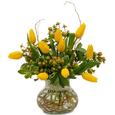Fresh New Day from Joseph Genuardi Florist in Norristown, PA