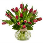 Just Red Tulips from Joseph Genuardi Florist in Norristown, PA