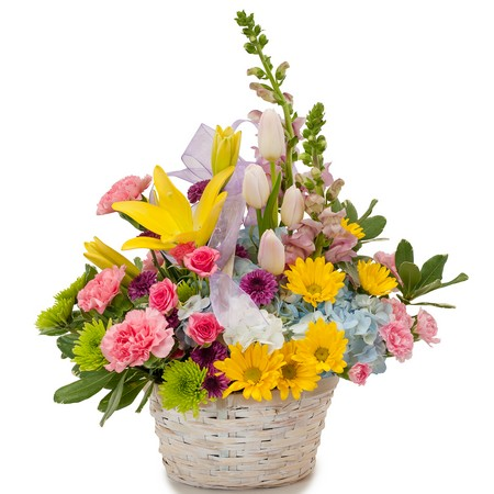 Spring has Sprung from Joseph Genuardi Florist in Norristown, PA