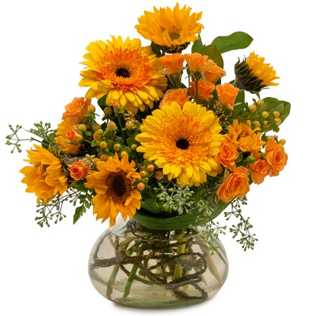 Sunflower Delight from Joseph Genuardi Florist in Norristown, PA